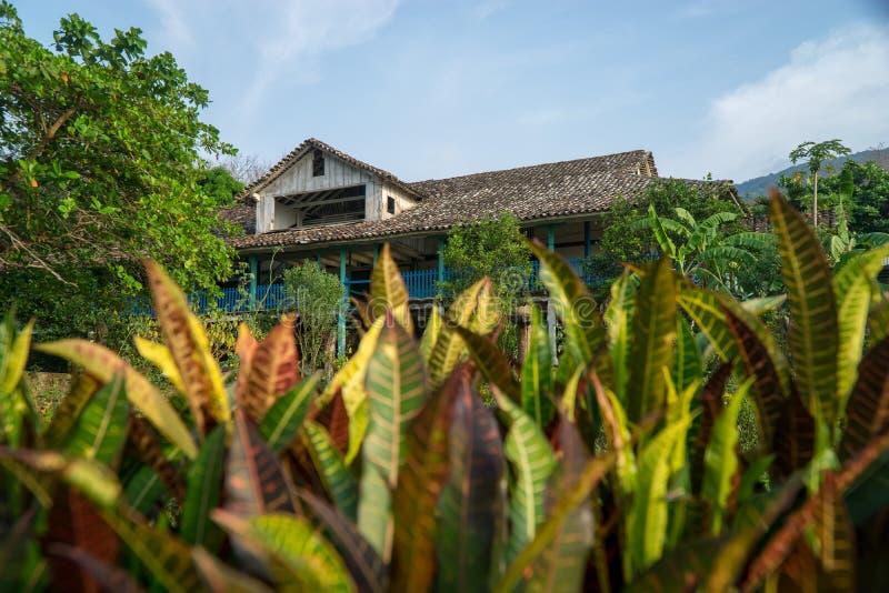 Casa colonial velha do estilo em um plantage do café em Ometepe, Nicarágua imagem de stock royalty free