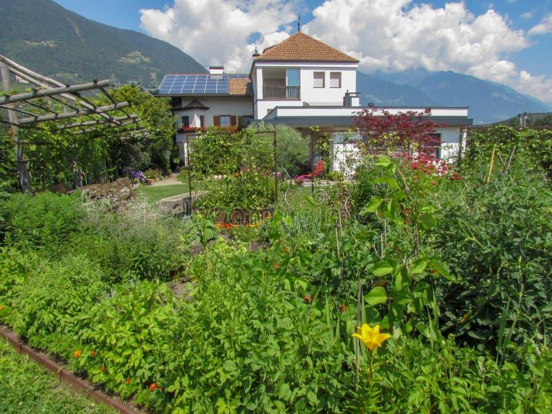 Casa com jardim e painéis solares no telhado imagem de stock royalty free