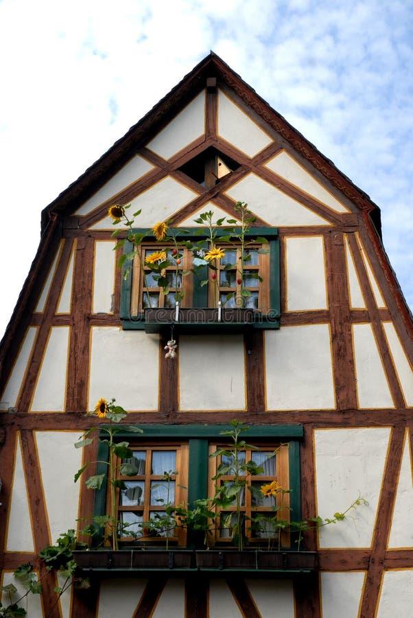 Casa com os girassóis em Bacharach ao longo do vale do Reno em Alemanha imagens de stock royalty free
