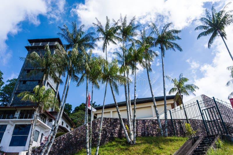 Casa com palmeiras tropicais fotos de stock royalty free