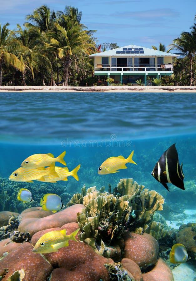 Casa con el jardín subacuático fotografía de archivo libre de regalías