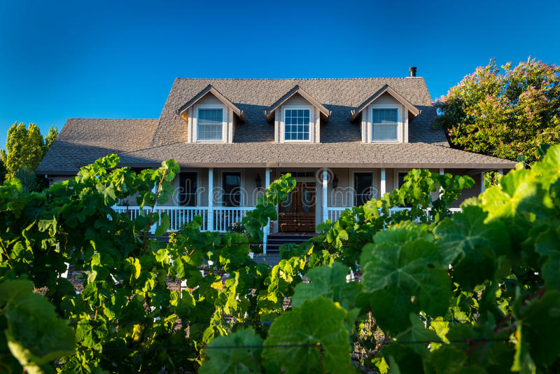 Casa con gli acini d'uva che crescono nell'iarda anteriore fotografia stock