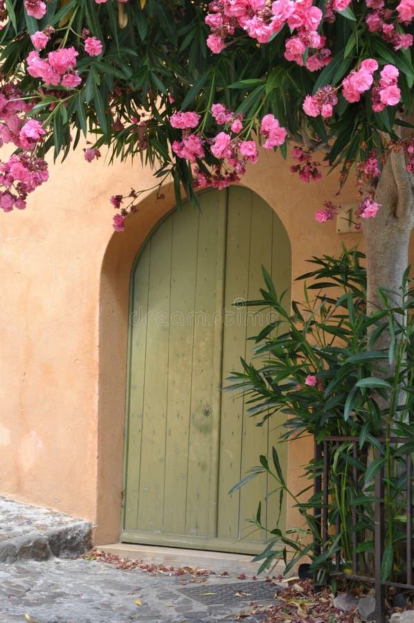 Casa con la puerta de madera y la enredadera floreciente fotografía de archivo libre de regalías
