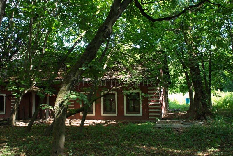 Casa con mattoni a vista rossa molto bella circondata dagli alberi e dall'erba immagine stock