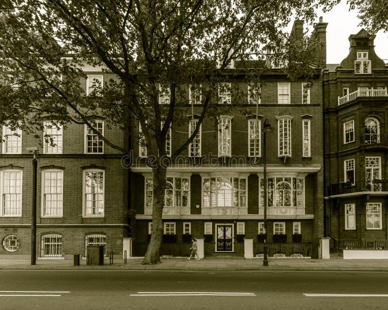 Casa da cisne de Londres em Chelsea Embankment foto de stock royalty free