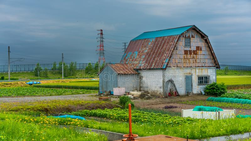 Casa da casa de campo com um jardim foto de stock royalty free