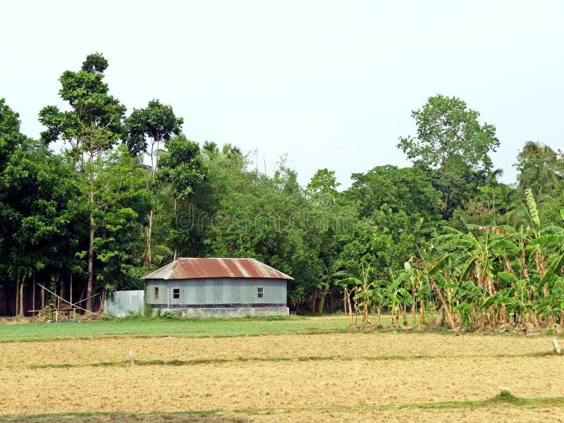 casa da exploração agrícola perto de Kushtia, Bangladesh imagens de stock
