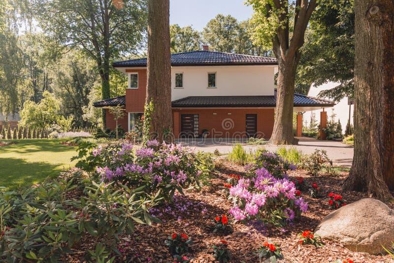 Casa da família com paisagem ensolarada foto de stock royalty free
