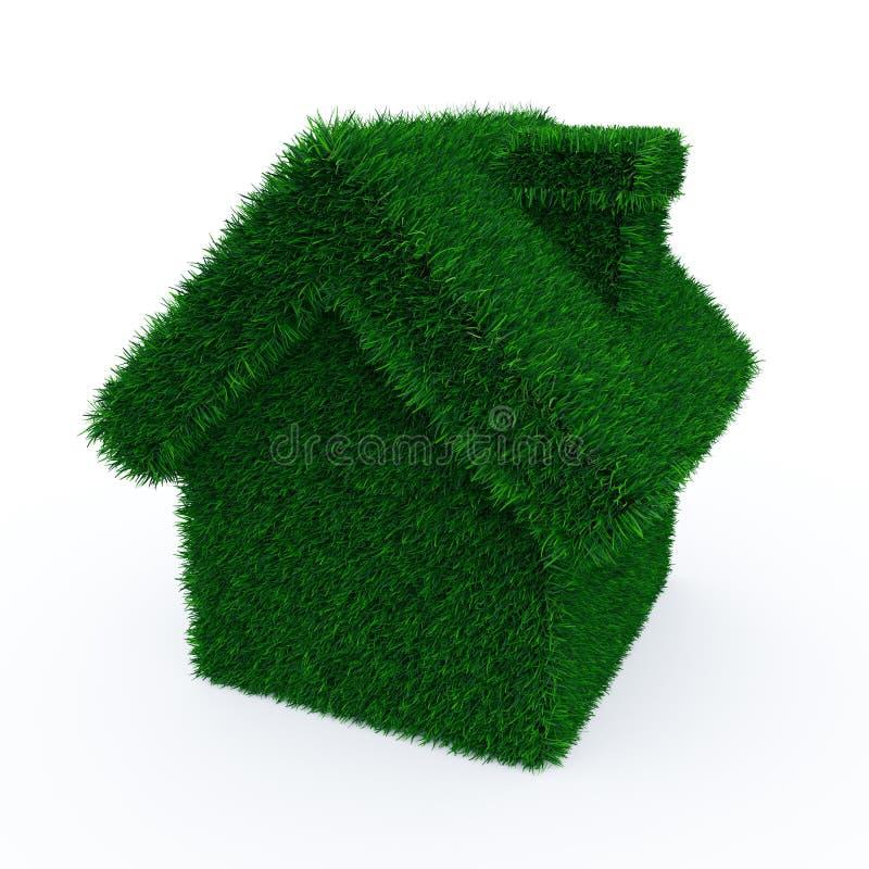 Casa da grama verde ilustração royalty free