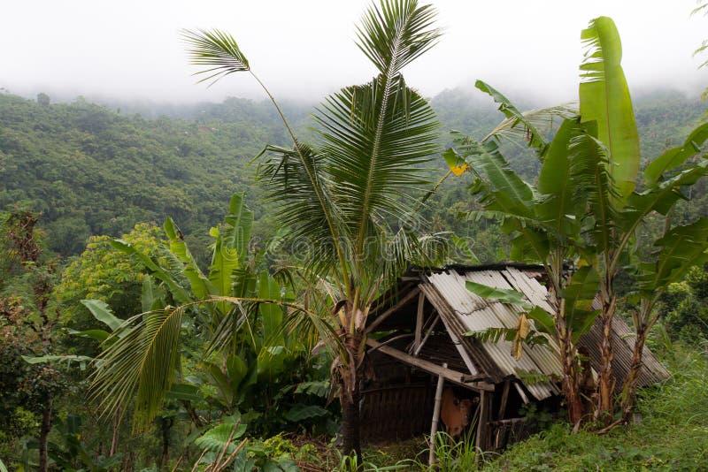 Casa da palha na aldeia da montanha imagens de stock