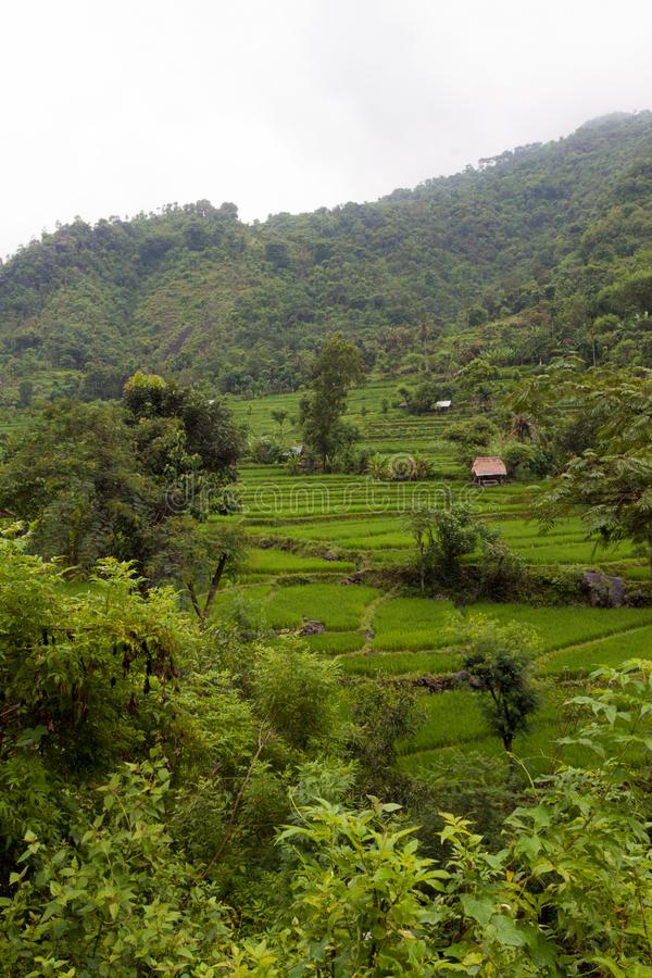 Casa da palha na aldeia da montanha imagens de stock royalty free