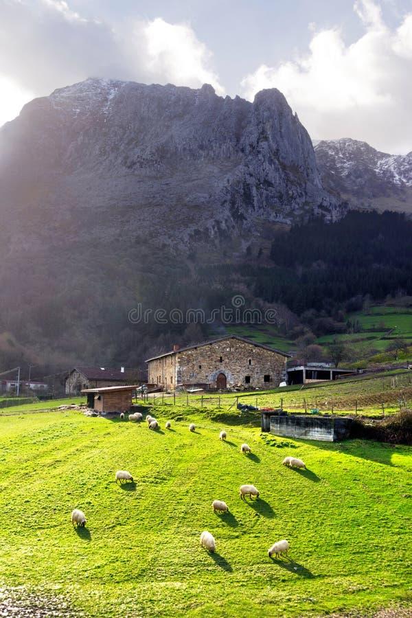 Casa da quinta Basque do país imagem de stock