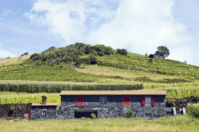 Casa da quinta bonita no console de Pico, Açores imagens de stock royalty free