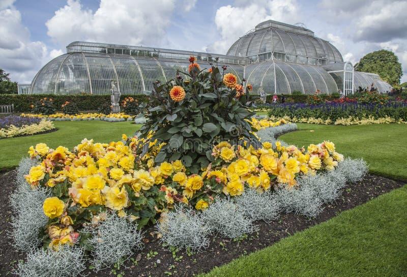 A casa da temperatura e as flores coloridas fotografia de stock royalty free
