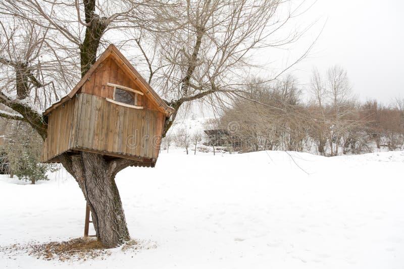 Casa das árvores de madeira, inverno em Andalo, Dolomites, Itália fotografia de stock royalty free