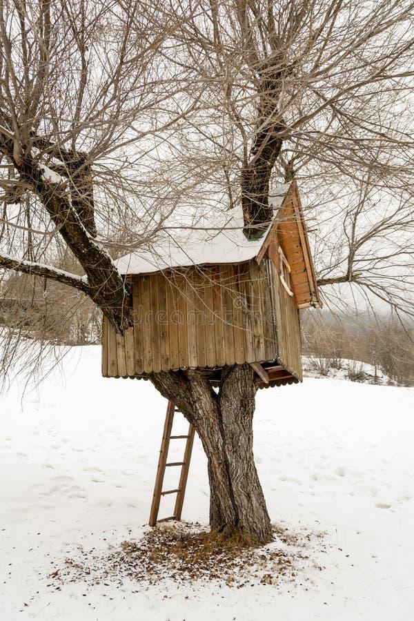 Casa das árvores de madeira, inverno em Andalo, Dolomites, Itália fotos de stock royalty free