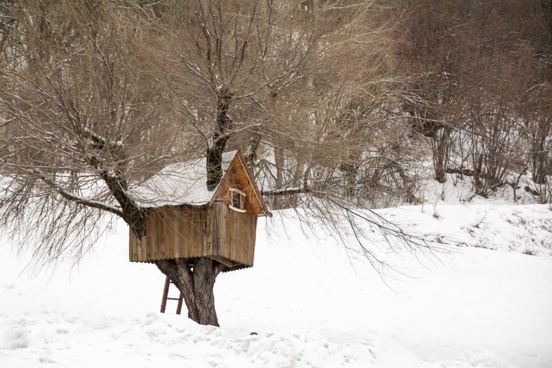 Casa das árvores de madeira, inverno em Andalo, Dolomites, Itália imagem de stock