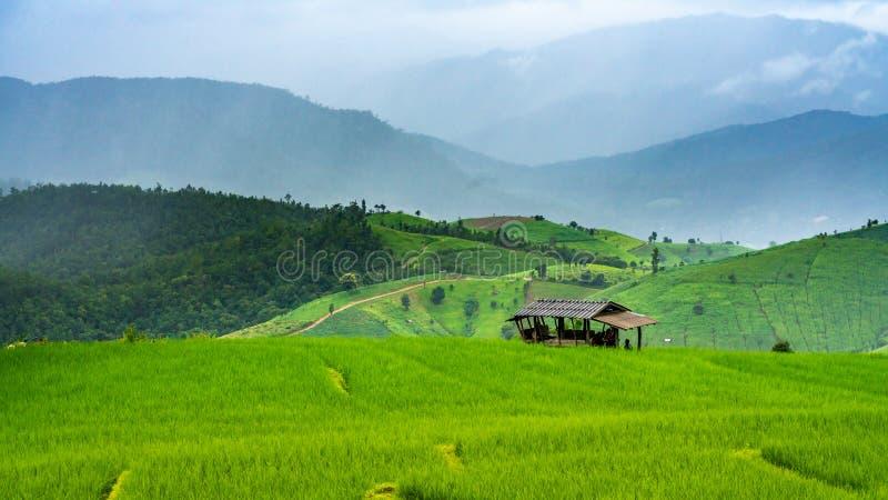 Casa de campo com paisagem verde da montanha imagem de stock royalty free