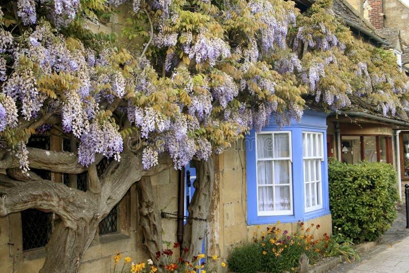 Casa de campo de Cotswolds na flor fotografia de stock