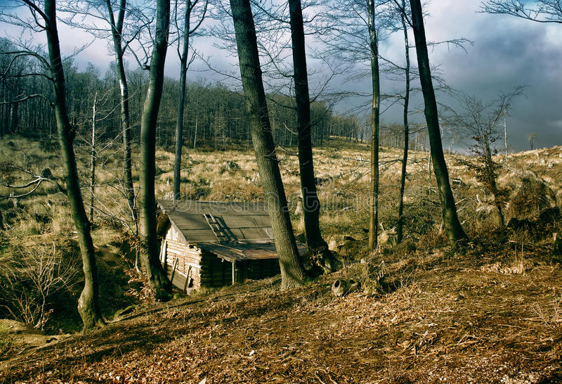 Casa de campo de madeira só fotos de stock royalty free
