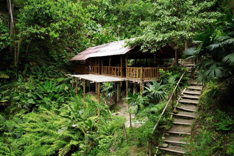 Casa de campo ecológica da floresta em Minca, serra Nevada de Santa Marta Mountain imagem de stock