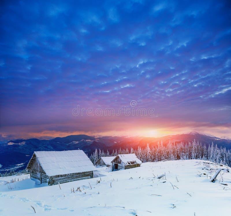 Casa de campo em montanhas nevado com as árvores fabulosas do inverno fotografia de stock