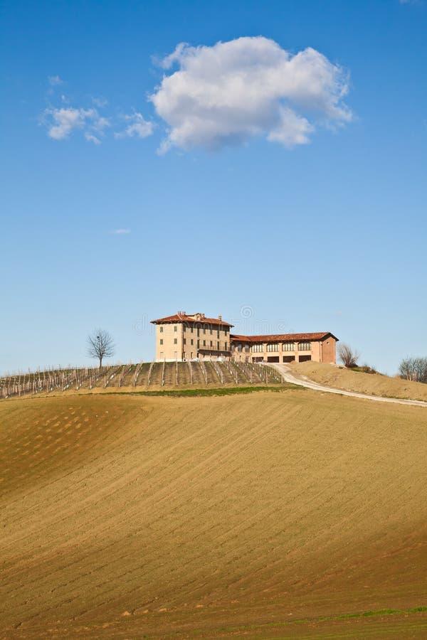 Casa de campo italiana com vinhedo: estação de mola foto de stock