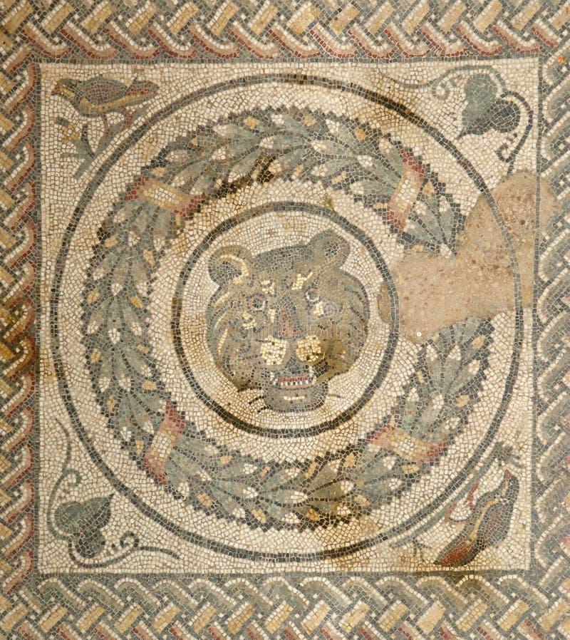 Casa de campo romana do fragmento do mosaico fotos de stock royalty free