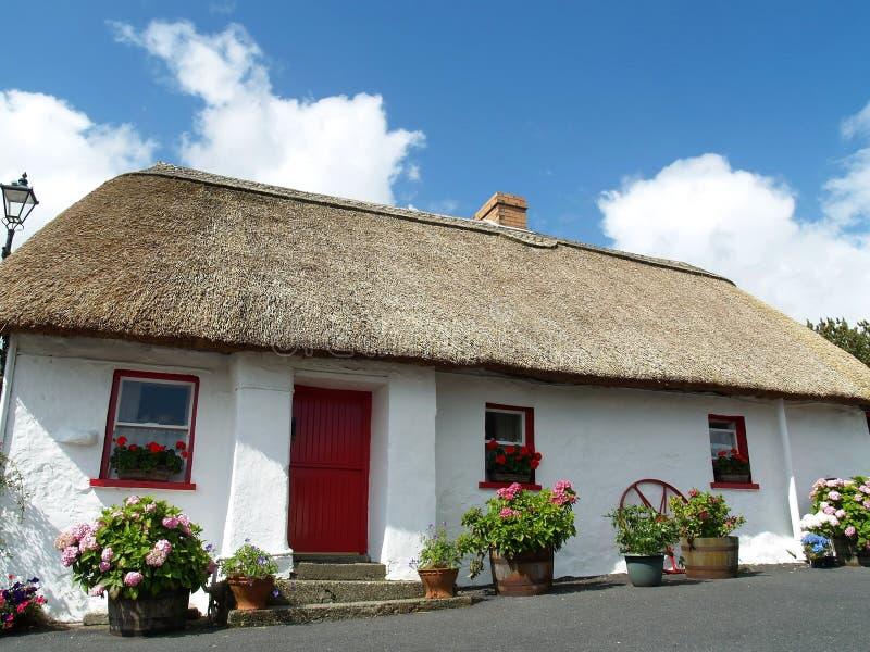 Casa de campo Thatched em Ireland fotografia de stock