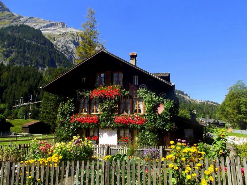 Casa de flores foto de archivo