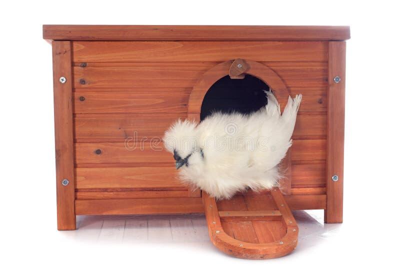 Casa de gallina fotografía de archivo