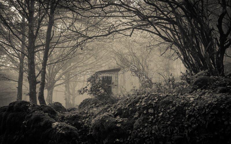 Casa de Ghost na névoa fotografia de stock
