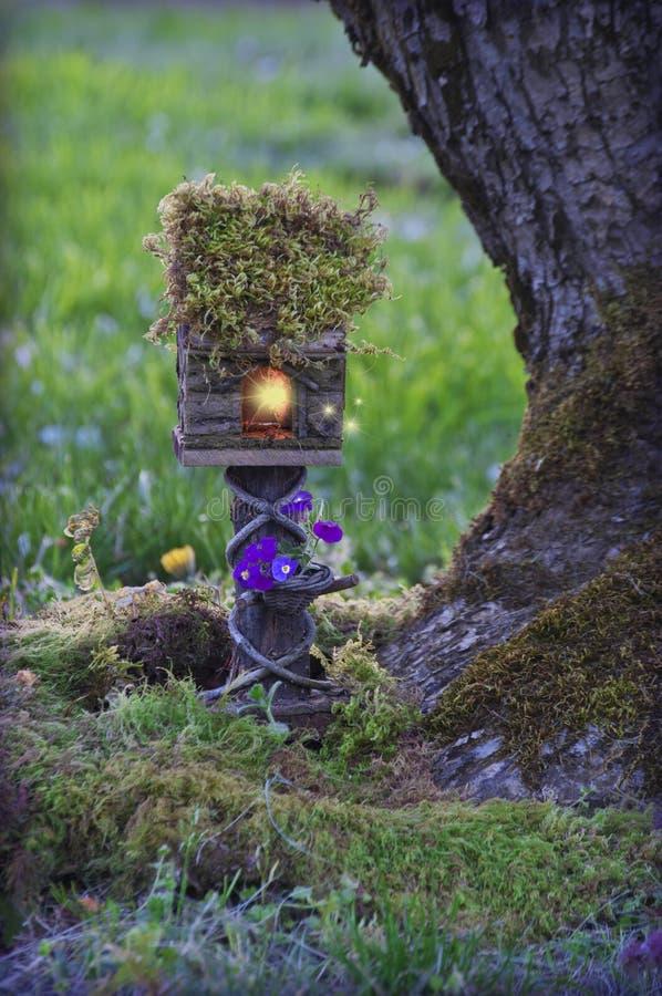 Casa de hadas con las luces de hadas al lado del manzano cubierto de musgo imagenes de archivo