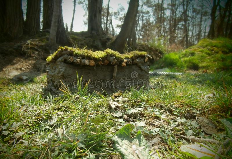 Casa de hadas en el bosque 2 fotografía de archivo libre de regalías