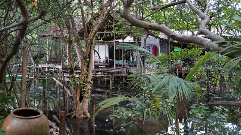 Casa de la selva imagen de archivo libre de regalías