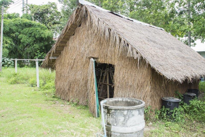 Download Casa de la seta foto de archivo. Imagen de grocery, cosecha - 42435446