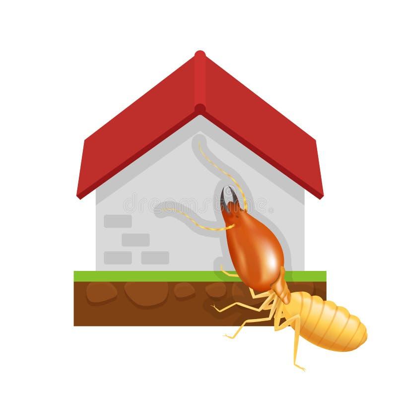 Casa de la termita y del cemento aislada en el fondo blanco, decaimiento comido hormiga del hogar del cemento de la termita de la ilustración del vector