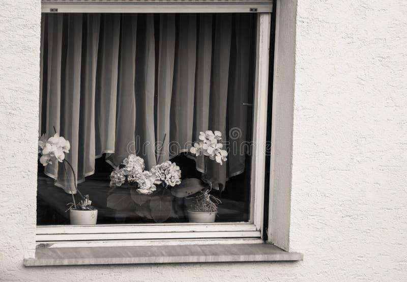 Casa de la ventana del hogar de la fachada del estilo de la arquitectura en Eslovenia foto de archivo