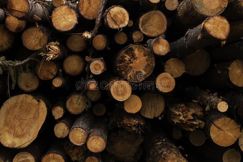 A casa de log, logs fecha-se acima, a serração imagens de stock