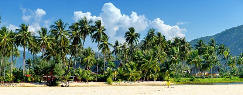 Casa de lujo en la playa arenosa con los árboles de palmas foto de archivo