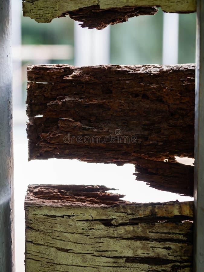 A casa de madeira da porta, deteriora a ruptura e a oxidação fotos de stock