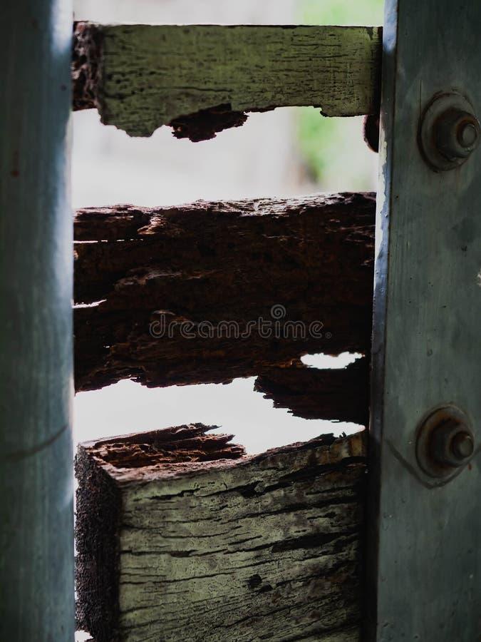 A casa de madeira da porta, deteriora a ruptura e a oxidação foto de stock
