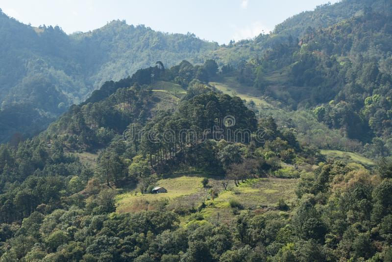 Casa de madeira entre a floresta nas montanhas de México fotos de stock royalty free