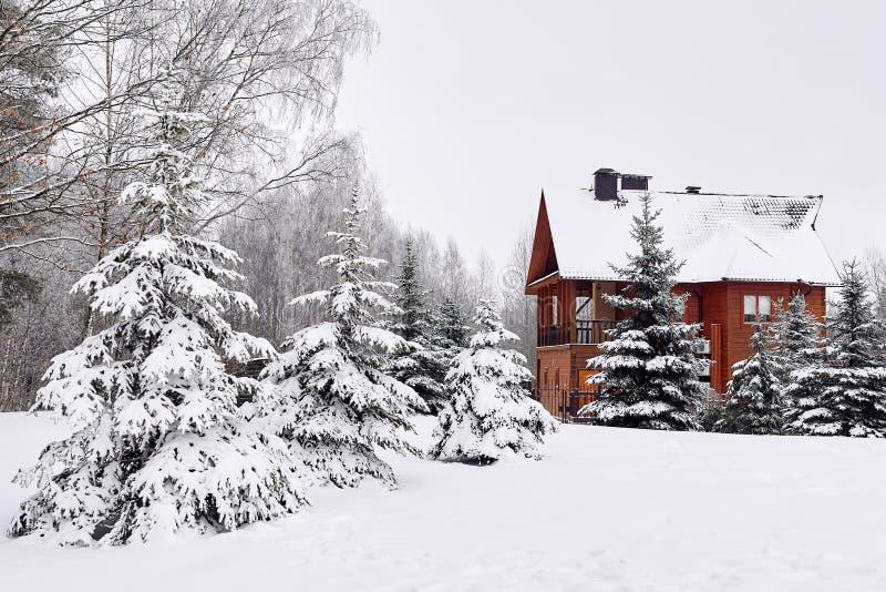 Casa de madeira na floresta feericamente da neve, árvores de Natal na neve fotografia de stock