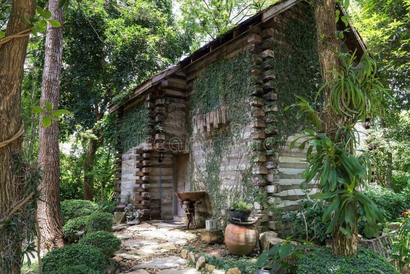 Casa de madera antigua con la planta de la hiedra del escalador fotos de archivo libres de regalías