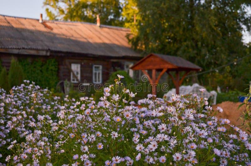 Casa de madera con las ventanas talladas en Vologda Rusia Estilo ruso en arquitectura Casa rusa r?stica con el jard?n foto de archivo