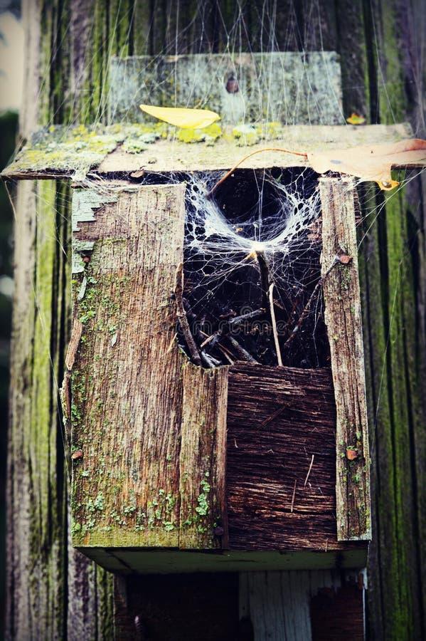 Casa de madera del pájaro con el web de araña foto de archivo libre de regalías