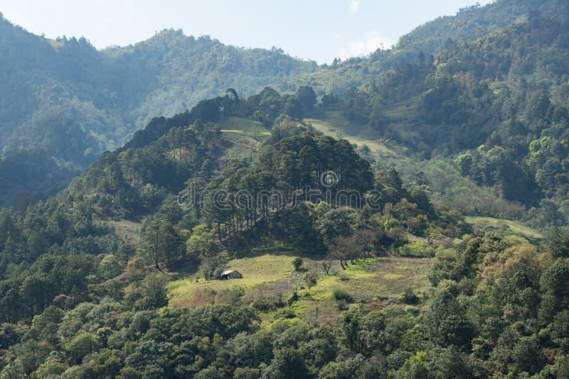Casa de madera entre el bosque en las montañas de México fotos de archivo libres de regalías