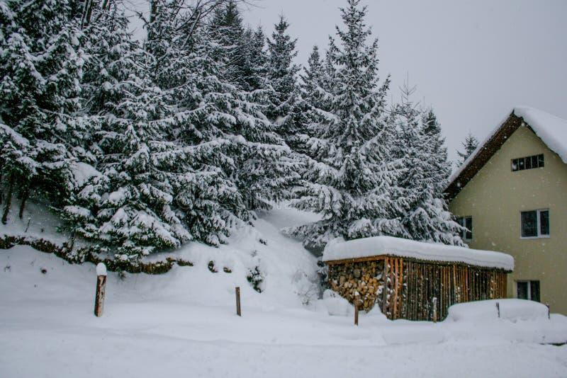 Casa de madera Nevado Invierno Montañas y bosque fotos de archivo libres de regalías