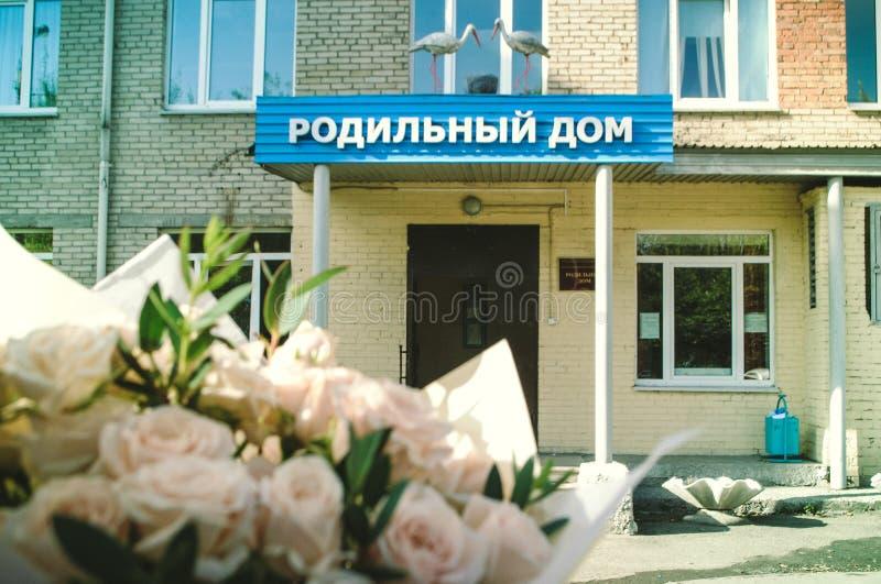 Casa de maternidade com cegonhas imagens de stock